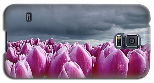 Heavy Clouds Galaxy S5 Case by Mihaela Pater