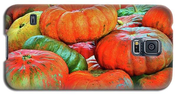 Heirloom Pumpkins Galaxy S5 Case