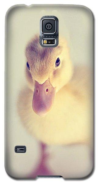 Hello Ducky Galaxy S5 Case by Amy Tyler