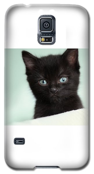 Galaxy S5 Case featuring the photograph Hello Kitty by Amy Tyler