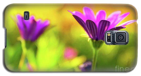 Hello Spring Galaxy S5 Case