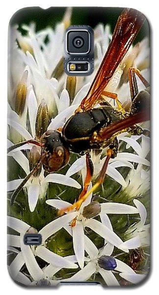 Hello, Wasp Galaxy S5 Case