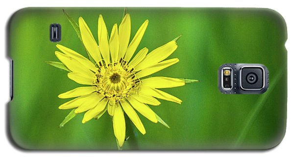 Galaxy S5 Case featuring the photograph Hello Wild Yellow by Bill Pevlor