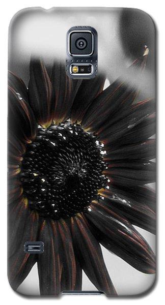 Hells Sunflower Galaxy S5 Case