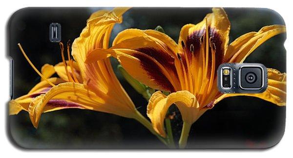 Hemerocallis Galaxy S5 Case