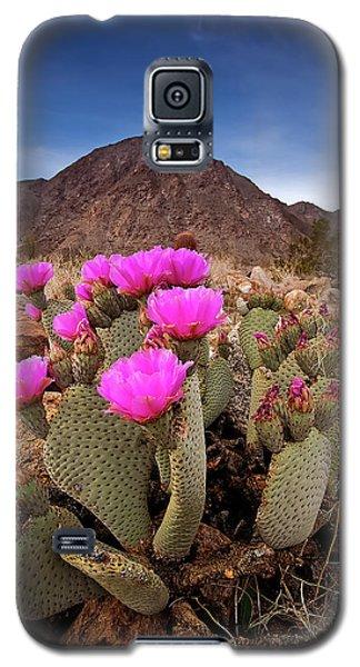 Henderson Canyon Beavertail Galaxy S5 Case