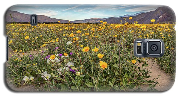 Galaxy S5 Case featuring the photograph Henderson Canyon Super Bloom by Peter Tellone
