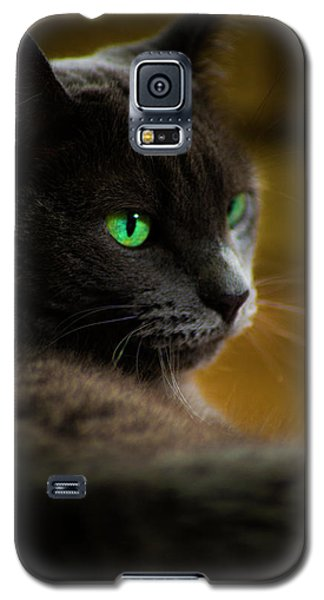 The Eyes Have It Galaxy S5 Case
