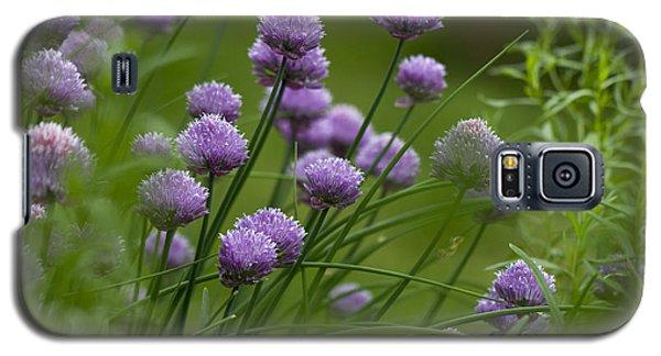 Herb Garden. Galaxy S5 Case