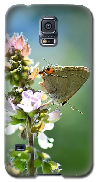 Herb Visitor Galaxy S5 Case by Debbie Green