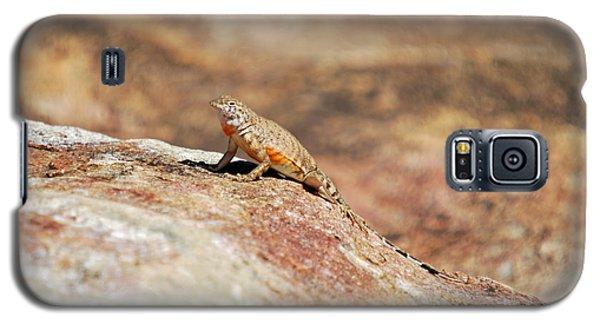 Galaxy S5 Case featuring the photograph Here Lizard Lizard  by Teresa Blanton