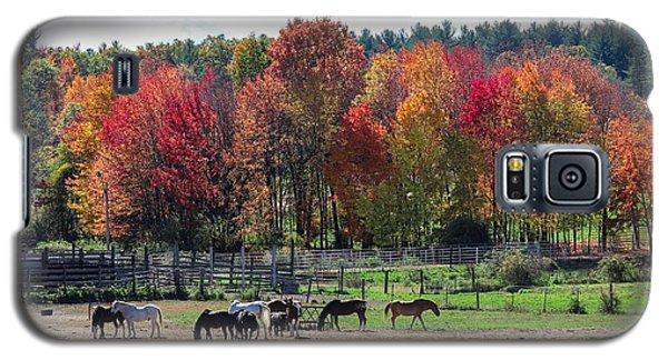 Heritage Farm In Easthampton, Ma Galaxy S5 Case