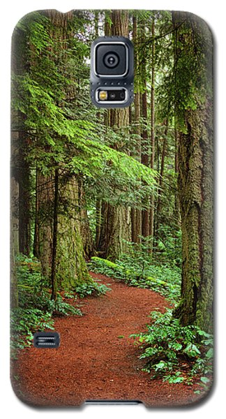 Heritage Forest 2 Galaxy S5 Case by Randy Hall