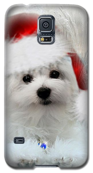 Hermes The Maltese At Christmas Galaxy S5 Case