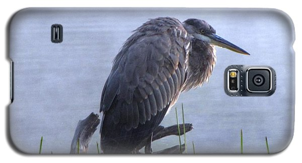 Heron 5 Galaxy S5 Case by Melissa Stoudt