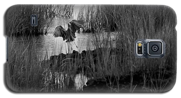 Heron And Grass In B/w Galaxy S5 Case