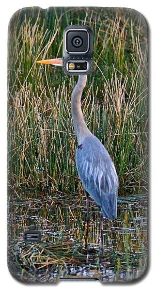 Heron At Sunset Galaxy S5 Case