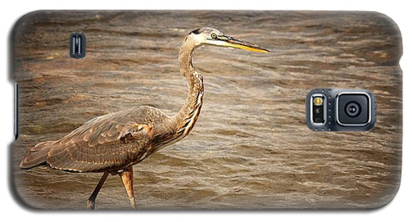 Galaxy S5 Case featuring the photograph Heron At The Lake by Greg Simmons