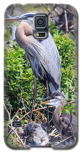 Heron Babies Galaxy S5 Case