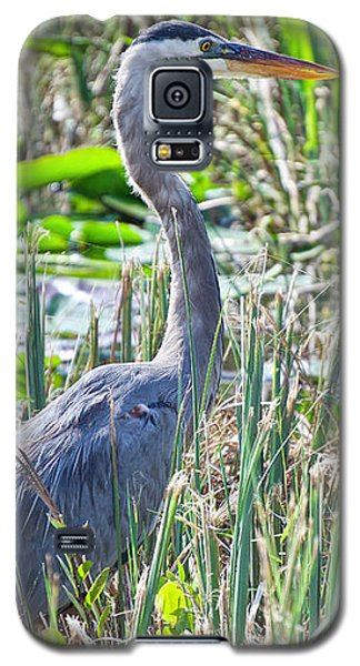 Heron By The Riverside Galaxy S5 Case
