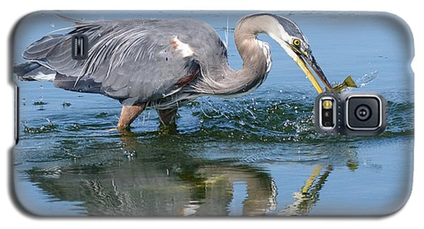 Great Blue Heron Catches A Fish Galaxy S5 Case