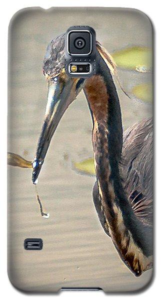 Galaxy S5 Case featuring the photograph Heron Fishing by Allen Biedrzycki