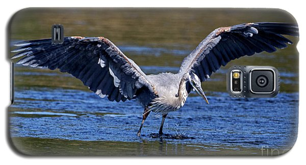 Heron Full Spread Galaxy S5 Case