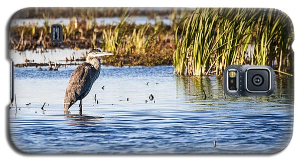 Heron - Horicon Marsh - Wisconsin Galaxy S5 Case by Steven Ralser