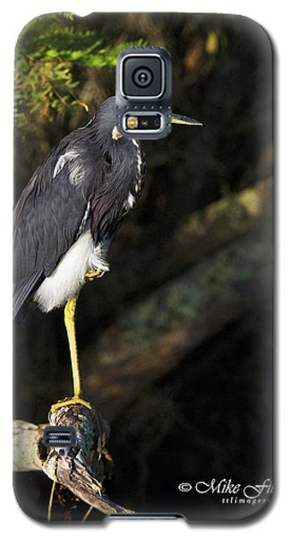 Heron In The Light Galaxy S5 Case