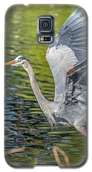 Heron Liftoff Galaxy S5 Case