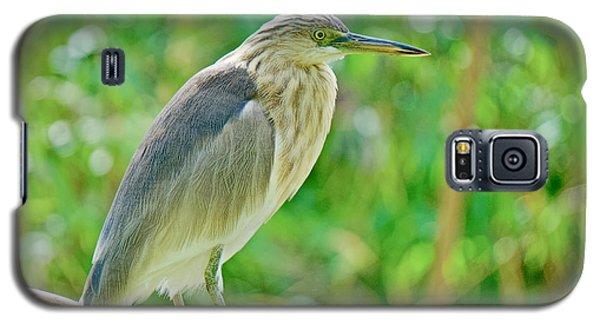 Heron On The Edge Galaxy S5 Case