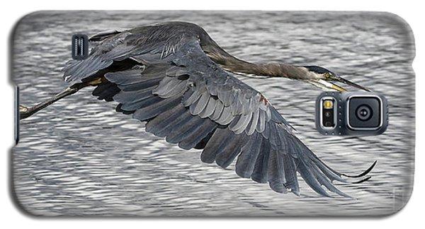 Heron In Full Flight Galaxy S5 Case