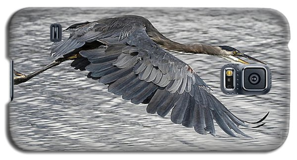 Heron In Full Flight Galaxy S5 Case