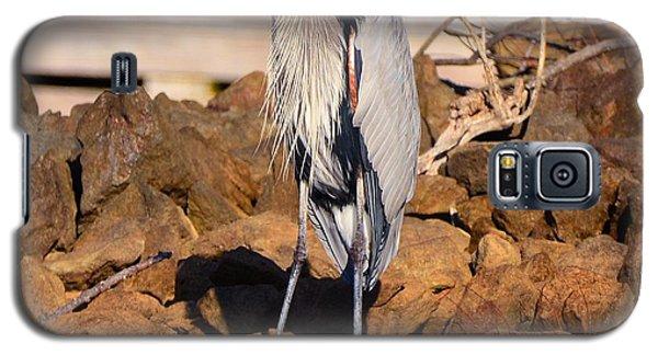 Heron On The Rocks Galaxy S5 Case