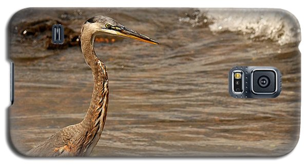 Galaxy S5 Case featuring the photograph Heron Supper by Greg Simmons