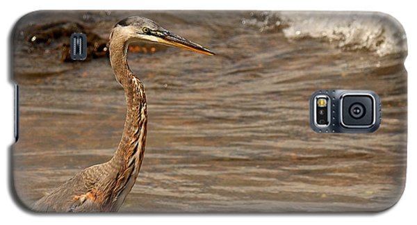 Heron Supper Galaxy S5 Case