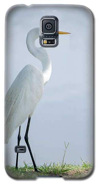 Heron  Galaxy S5 Case