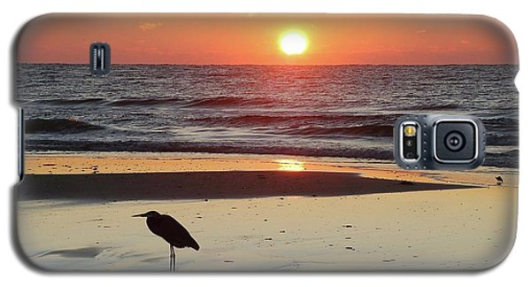 Heron Watching Sunrise Galaxy S5 Case
