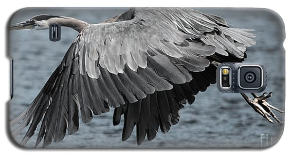 Herons Flight Galaxy S5 Case