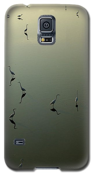 Herons On Lake 367 Galaxy S5 Case