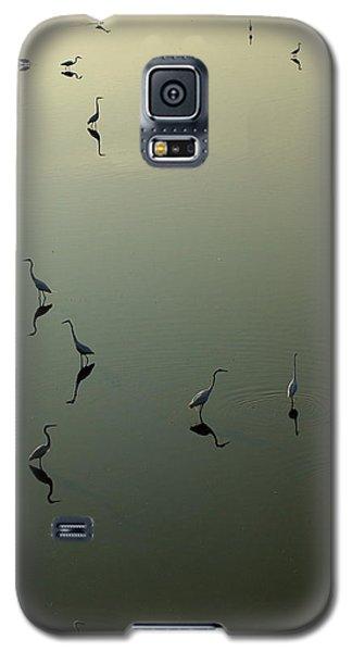 Herons On Lake 367 Galaxy S5 Case