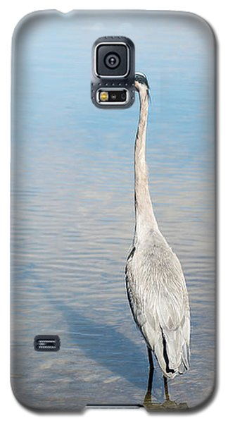 Heron's Watch Galaxy S5 Case by Gwen Vann-Horn