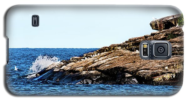 Herring Gull Picnic Galaxy S5 Case
