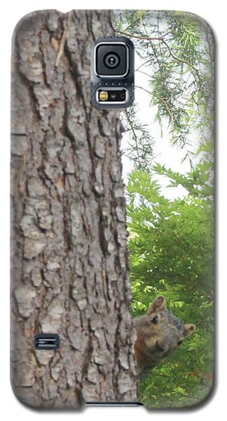 Galaxy S5 Case featuring the photograph Hey Down Here by Marie Neder