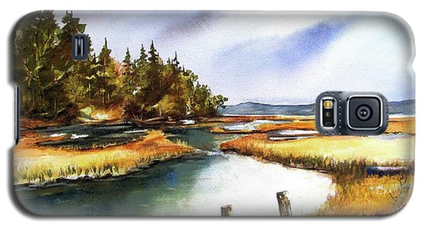 Galaxy S5 Case featuring the painting Heyer Pt   Vashon Wa by Marti Green