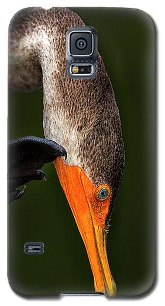 Hi... Galaxy S5 Case