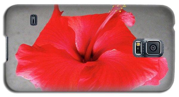 Hibiscus #1 Galaxy S5 Case
