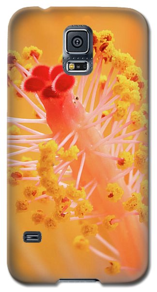 Hibiscus-1 Galaxy S5 Case