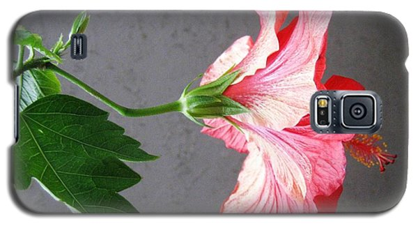 Hibiscus #4 Galaxy S5 Case