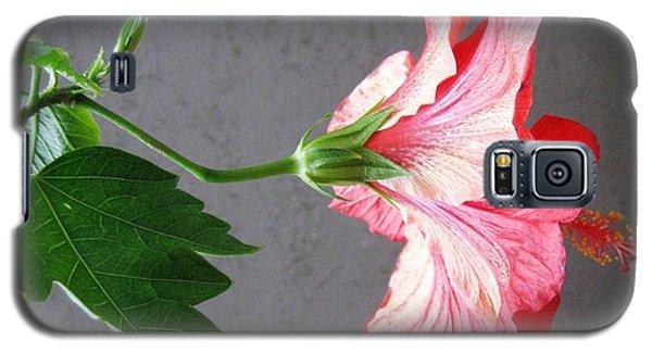 Hibiscus #4 Galaxy S5 Case